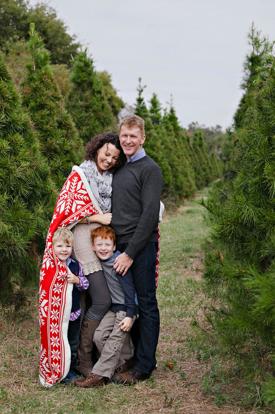 Christmas Tree Farm Mini Sessions.Sneak Peek Christmas Mini Sessions Holiday Acres Tree